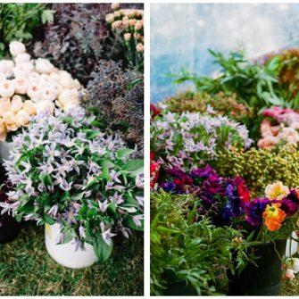Flowers from Florabundance